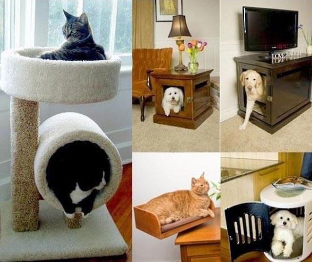 Как сделать дом для домашнего питомца