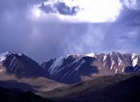 Родина Ши-Тцу находится на Тибете — «Вершине мира»