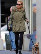 Актриса Наоми Уоттс так любит йоркширского терьера Боба, что выгуливала его сама во время первой беременности