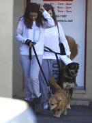 Селена Гомез спасла свою собаку больше года назад, взяв питомца из приюта. В знак благодарности пес Бейлор «защищал» певицу несколько раз от назойливых папарацци, подставляя в кадр свою милую морду