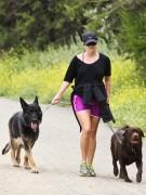 Риз Уизерспун обожает гулять со своими собаками. Актриса водит на прогулку лабрадора и овчарку не только в парк, но и в походы