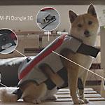 Pedigree научила собак публиковать фотографии в Facebook при помощи хвоста