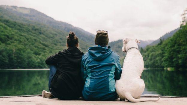 Собаки очень привязаны к людям